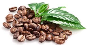 意大利�鹘y烘焙咖啡品牌�ふ抑��地�^��N商/合作伙伴